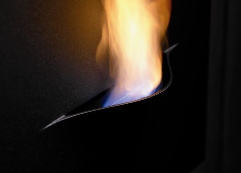 bio-fires-288