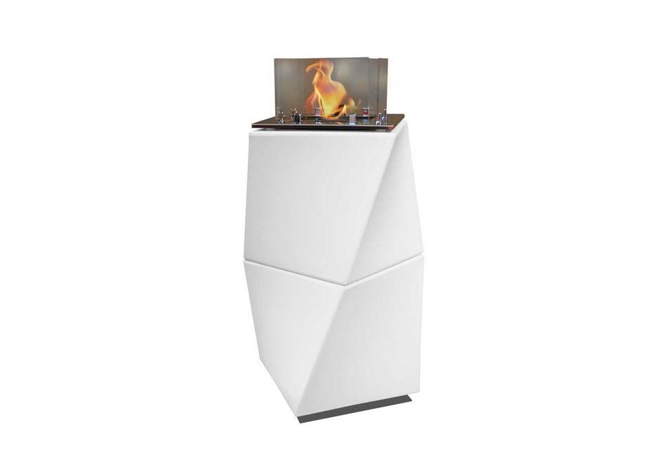 Bio-fireplace_113