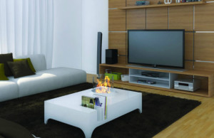 bio ethanol fire biofuel and ethanol fireplace bio fire lovter