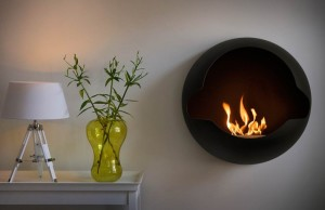 Bio Ethanol Fire Biofuel And Ethanol Fireplace Bio Fire